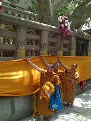 monks covering the bodhi in fabric