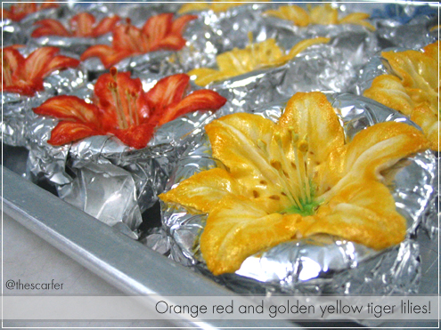 Orange red and golden yellow lilies!