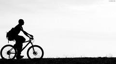 Caffarella, Ciclista Controluce