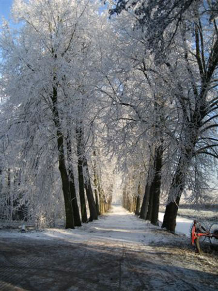 Winter-2007-033