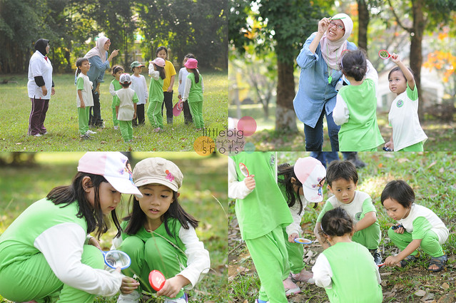 A Day Out with Little Explorers