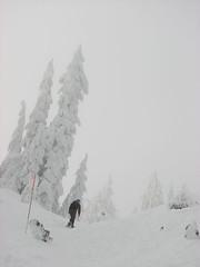 Hollyburn snowshoe, 24 Dec 2007