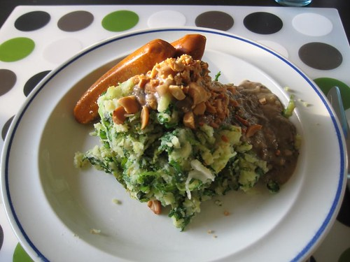 """Hollandse pot"" (Dutch dish): potato mash with raw endive and mushroom gravy"