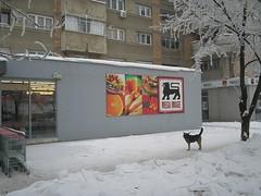 Logo, Mega Image supermarket, Tineretului, Buc...