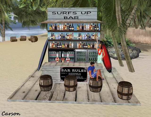 Dark Vision - Surfs Up Bar (2)