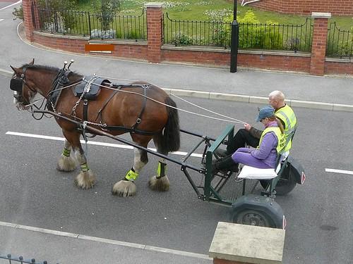 Horse&Cart 002