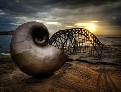 Shell and Bridge at Dawn