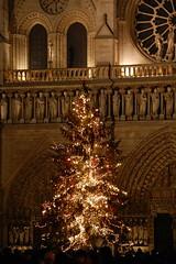 Paris' Christmas