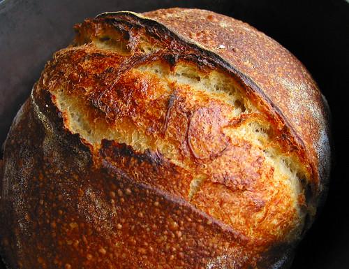 "Norwich Sourdough's ""Grigne"" & Crust"