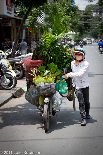 Plant seller, Saigon