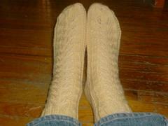 Something's Shady Socks - Top View