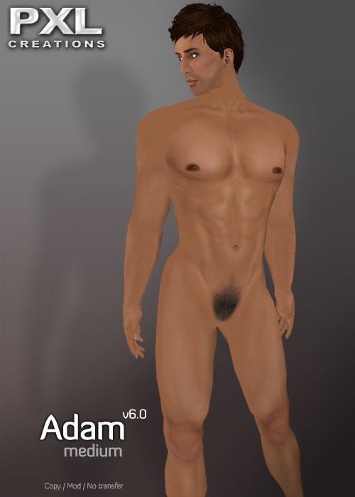Adam Medium V6