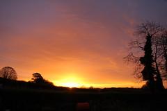 Sunrise Welcome