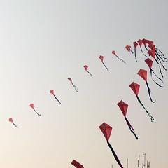 Pongal Kite Festival