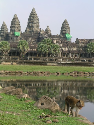 Angkor Wat and a monkey