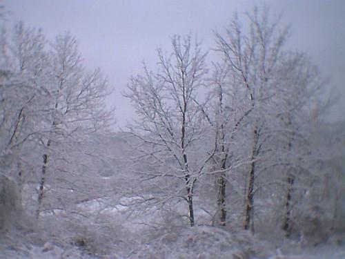 20050108_23