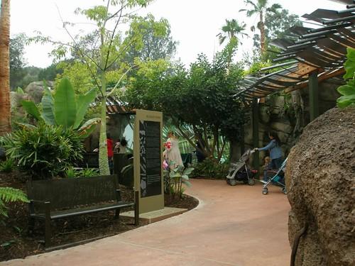Campo Gorilla Reserve