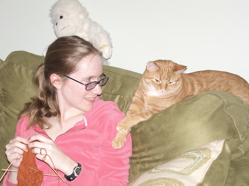Stimpy likes to watch me knit