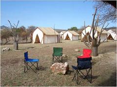 Zebu Camp Madagascar