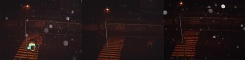 Orbs In The Rain