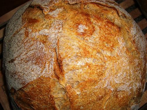 Kneaded No-Knead Bread
