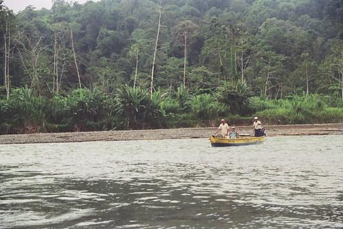 Rio Teribe con niveles normales de agua lóticas, Panamá