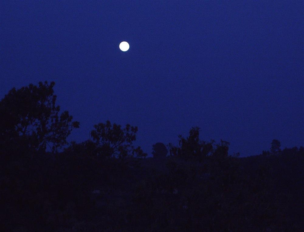 the_full_moon_adar_ii_5768.jpg