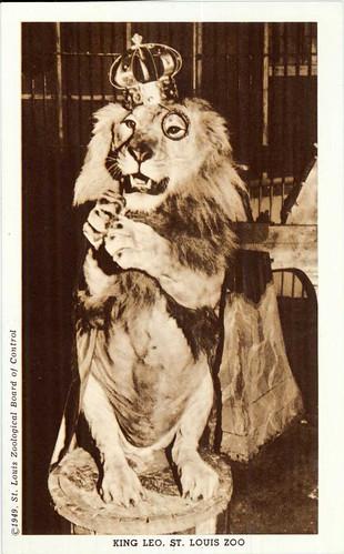 King Leo.jpg