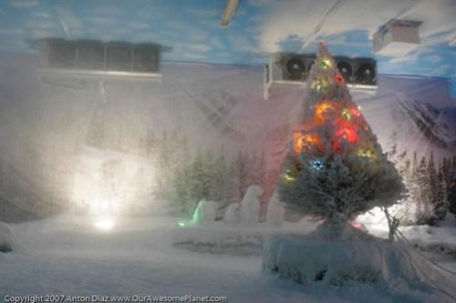 Snow World @ Star City-18