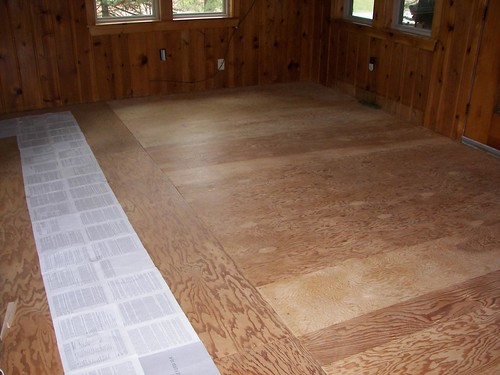 Plywood floor, sanded