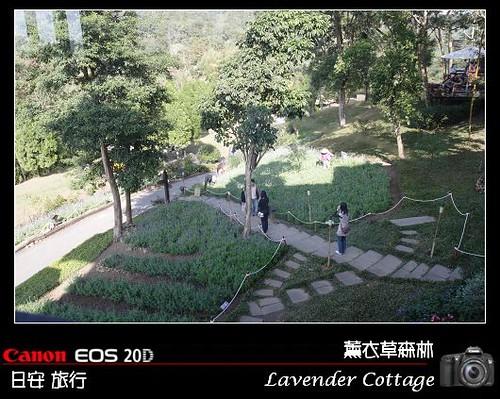 LavenderCottage_0002