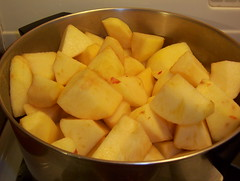 beginning applesauce