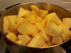 beginning applesauce
