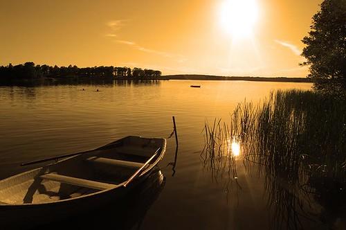 Swedish Summer