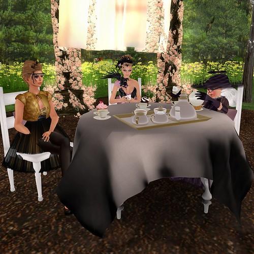 Tea Party 02.06.11 #5