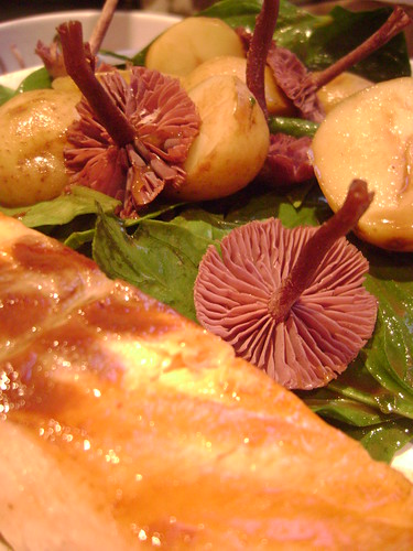 Amethyst Deceiver , New Potato and Spinach Salad