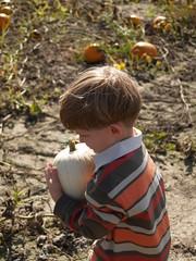 mission pumpkin accomplished