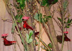 Flowers in bird holders at the Palazzo in Las Vegas