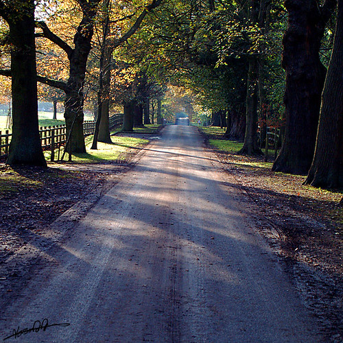 Road to Toft Hall