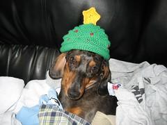 Christmas Tree Hat modeled