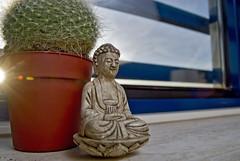 Gautama Buddha got company!