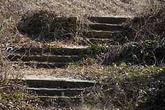 Old Campbell Mill Steps