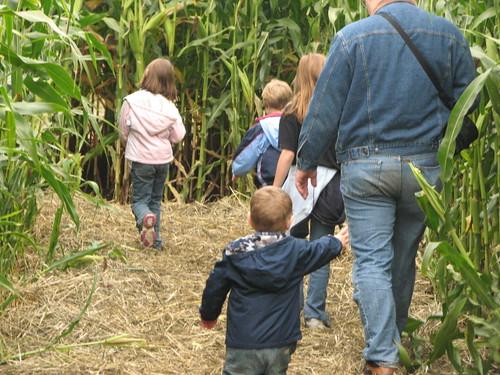 Headed into the Corn Maze