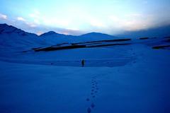 Figure in Snow1