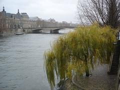 Seine (12)