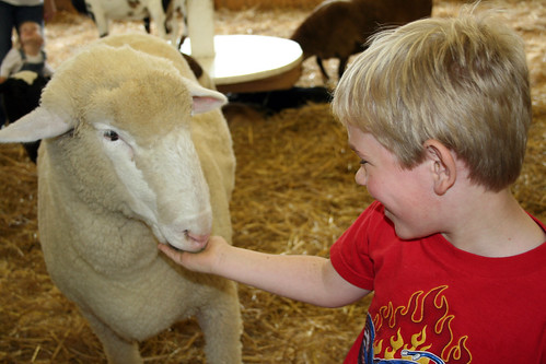 Child and Sheep