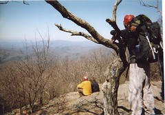 On Springer Mountain