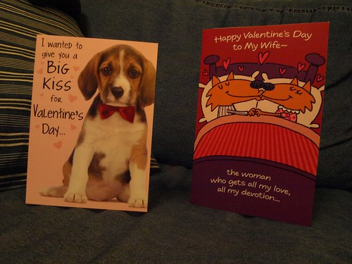 From the dogs and my husband