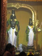 Honey Thirumanjanam