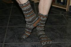 Ollie's Bamboo Socks